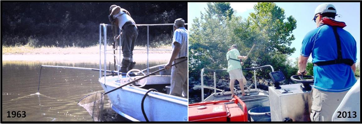 Historical LTEF Electrofishing