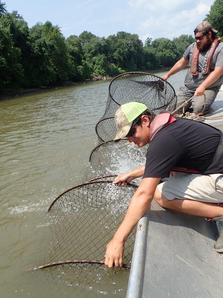 Technicians pulling a hoop net